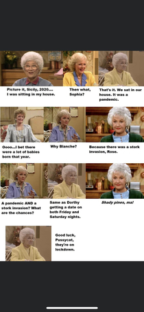 I can see this playing out just like this on golden girls
