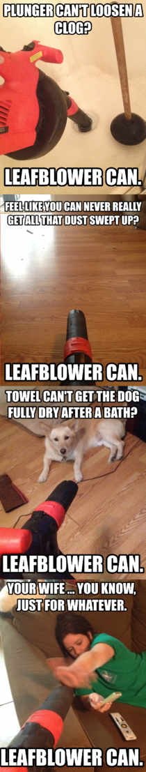I cant be the only one Any leafblower love out there