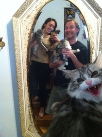 I dont think fluffy wanted to be in the family photo