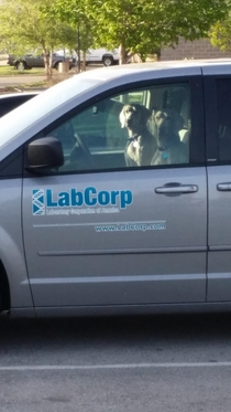 I feel like lab Corp is judging me