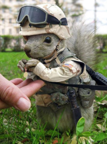 I googled marine animals and was not disappointed