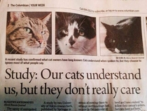 I like how they have pictures of local cats that they presumably interviewed for the article
