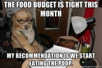 I miss this meme Financial Advisor Dog cuts the budget
