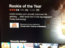 I need to know whos writing Netflix movie descriptions