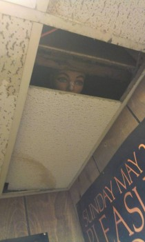 I put a mannequin head in the ceiling Do you think anyone will notice