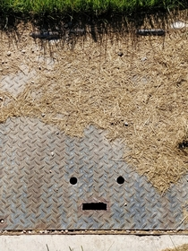 I saw a grass-covered grate at the park that reminded me of Conan OBrien