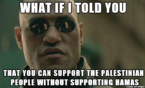 I see way too many people accusing anyone who doesnt support Israel of being pro-Hamas