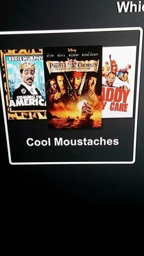 I stumbled upon Netflixs best category ever