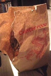 I think my Chinese food is undercooked