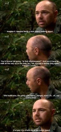I think reddit needs more Karl Pilkington