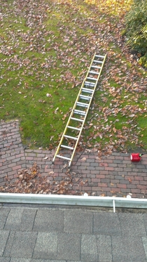 I was putting up Christmas lights but now it looks like Im stuck on the roof for the time being Shit