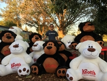 I was so preoccupied with the thought of whether or not I could win  giant bears from Knotts Berry Farm I didnt stop to think whether I should win  giant bears from Knotts Berry Farm