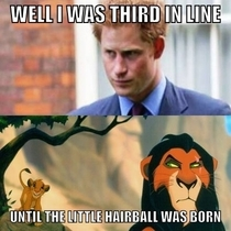 I wonder what Prince Harry really thinks