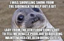 I work from home and thought Id help out by clearing the sidewalks after it snowed