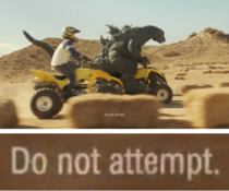 If I had the chance to race Godzilla on four-wheelers you wouldnt be able to fucking stop me