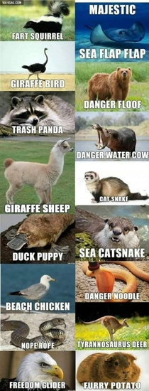 If Redditors named animals