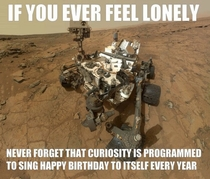 If you are ever feeling lonely