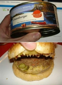 Ill see your Pizzaburger Hotdog and raise you a canned cheeseburger