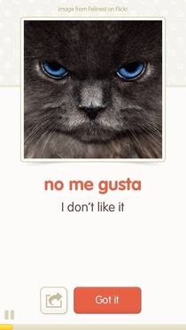 Im moving to Belize in a couple of months and Im trying to learn some Spanish I found an app that teaches you Spanish with LOL cats This is gonna be fun