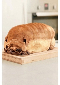 Im not a bread