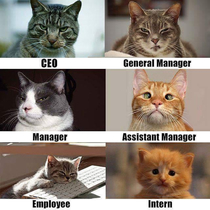 Im the employee which one are you