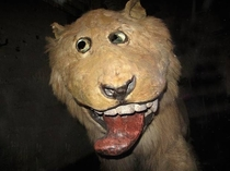 In  king Frederick I of Sweden set a taxidermist to work on his recently deceased lion The problem - the taxidermist had never seen a lion before