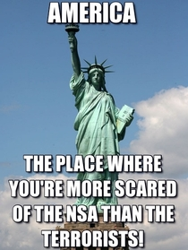 In light of the new NSA leaks