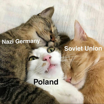 Invasion of Poland in nutshell