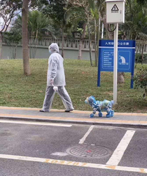 Is this how I will have to walk Fido in PA soon My sister in law lives in Beijing and sent this to us this morning She says more and more Beijing is going full out protection mode due to coronavirus How does that dog do his business
