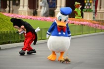Its my cake day but I had nothing prepared so heres a picture of Donald with his adoptive family at Disneyland