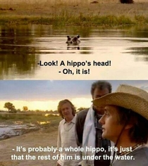 Its probably a whole hippo