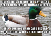 Its tht time of the year again keep your pets safe