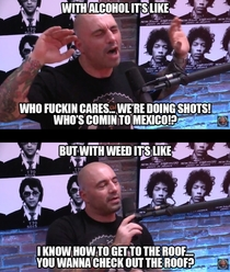 Joe Rogan on the differences between alcohol and marijuana