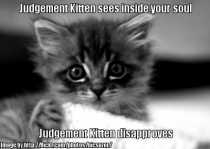 Judgement Kitten sees into your soul