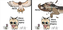 Jumping on the Peta Hatewagon Original artwork credit Ben Hed  Pet FooleryIG
