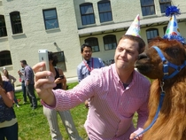 Just a guy taking a selfie with a llama in a party hat