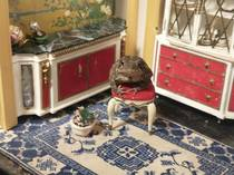 Just a toad hanging out in a miniature room
