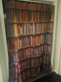 Just installed a fake bookcase with a secret passageway behind it