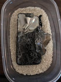 Just put your phone in rice should be fine in the morning