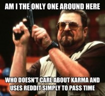 Kind of hypocritical to post this but after seeing everyone obsessing about Karma