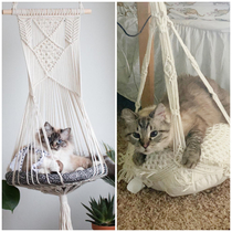 Left is  cat bed and right is my  Target doup EmmyLou doesnt seem to mind