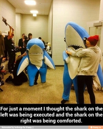 Left Shark punished for Super Bowl performance