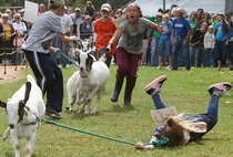 Lets bring our cute little goat to the county fair It will be fun they saidFML