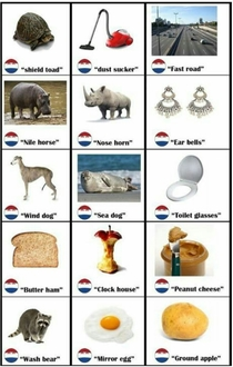 Literal Translations of Dutch Words