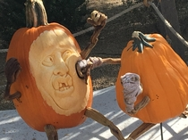 Local pumpkin contest had  pumpkins boxing each other