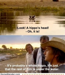 Look A hippos head