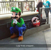 Luigi just couldnt put up with being  anymore