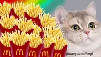 Me Can I put an image of a cat next to French fries on my debit card Wells Fargo umm I guess