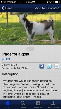 Meanwhile in my local classifieds a very specific trade offer has been brought to our attention