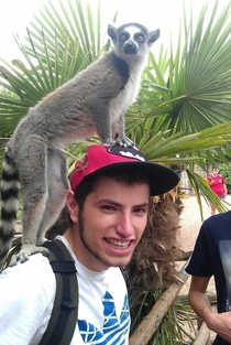 Met a lemur on vacation Then bought a new hat